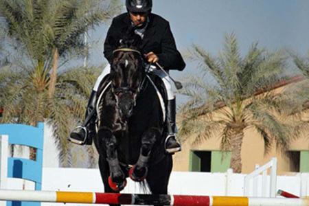 Horse Riding Visitabudhabi Ae