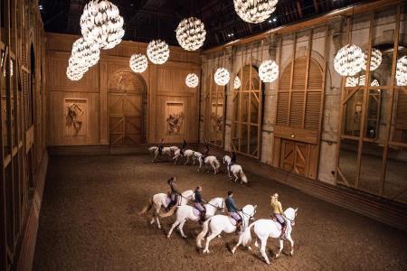 Unique Equestrian Choreography in Al Ain